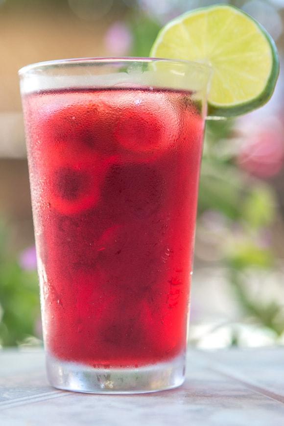 Agua De Jamaica Hibiscus Tea Planned Lifetime Advocacy Network